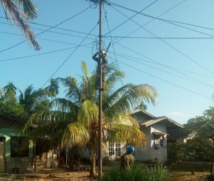 Pertamina Dumai Sinergi, Tanjung Palas Bercahaya