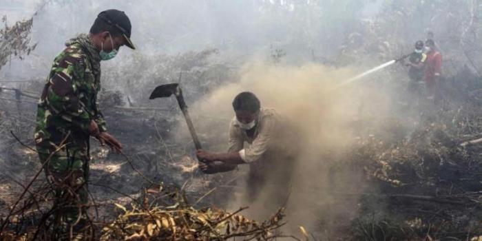 Kebakaran Lahan Hanguskan 6 Hektar di Bangsal Aceh Dumai