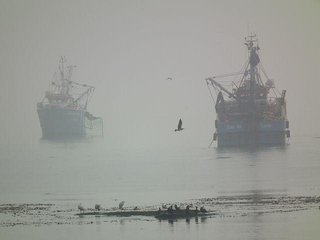 KSOP Dumai Himbau Pelayaran Waspada Kabut Asap