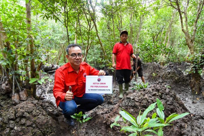 Memperingati Harlah ke 73, DPC PDI Perjuangan Dumai Tanam Pohon Bakau Megawati Soekarno Putri