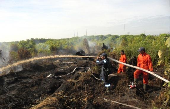 Kebakaran Lahan Milik Pertamina Dumai Meluas