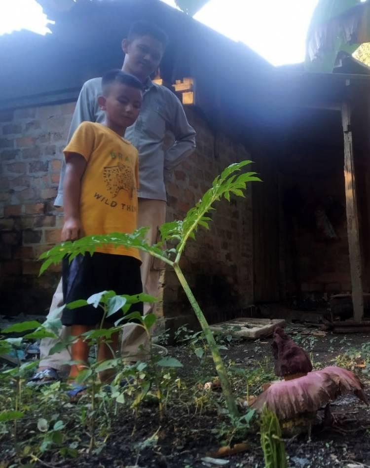 Bunga Bangkai Tumbuh Dibelakang Rumah Warga di Dumai