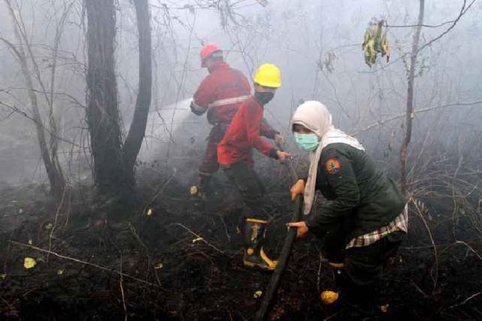 Api Karlahut Nyaris Bakar Rumah Warga di Mundam, Dumai