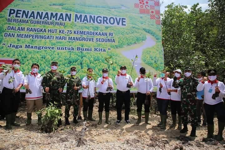 Gubernur dan Forkompinda Riau Ikuti Penanaman 2020 Batang Mangrove di Dumai