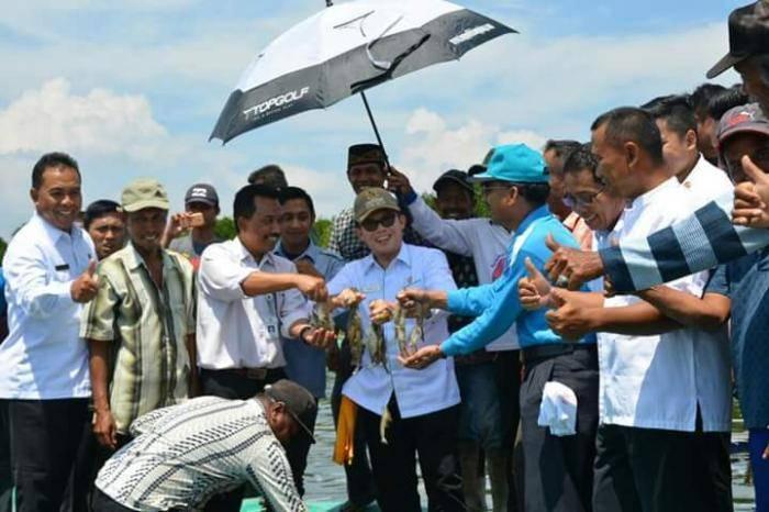 Dumai Direncanakan Pusat Pengembangan Udang Vaname Skala Besar
